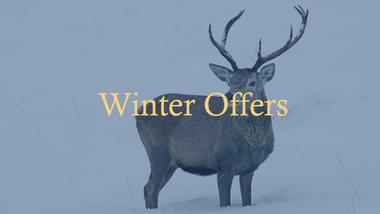 Winter Offers at the Kinlochewe Hotel in Torridon